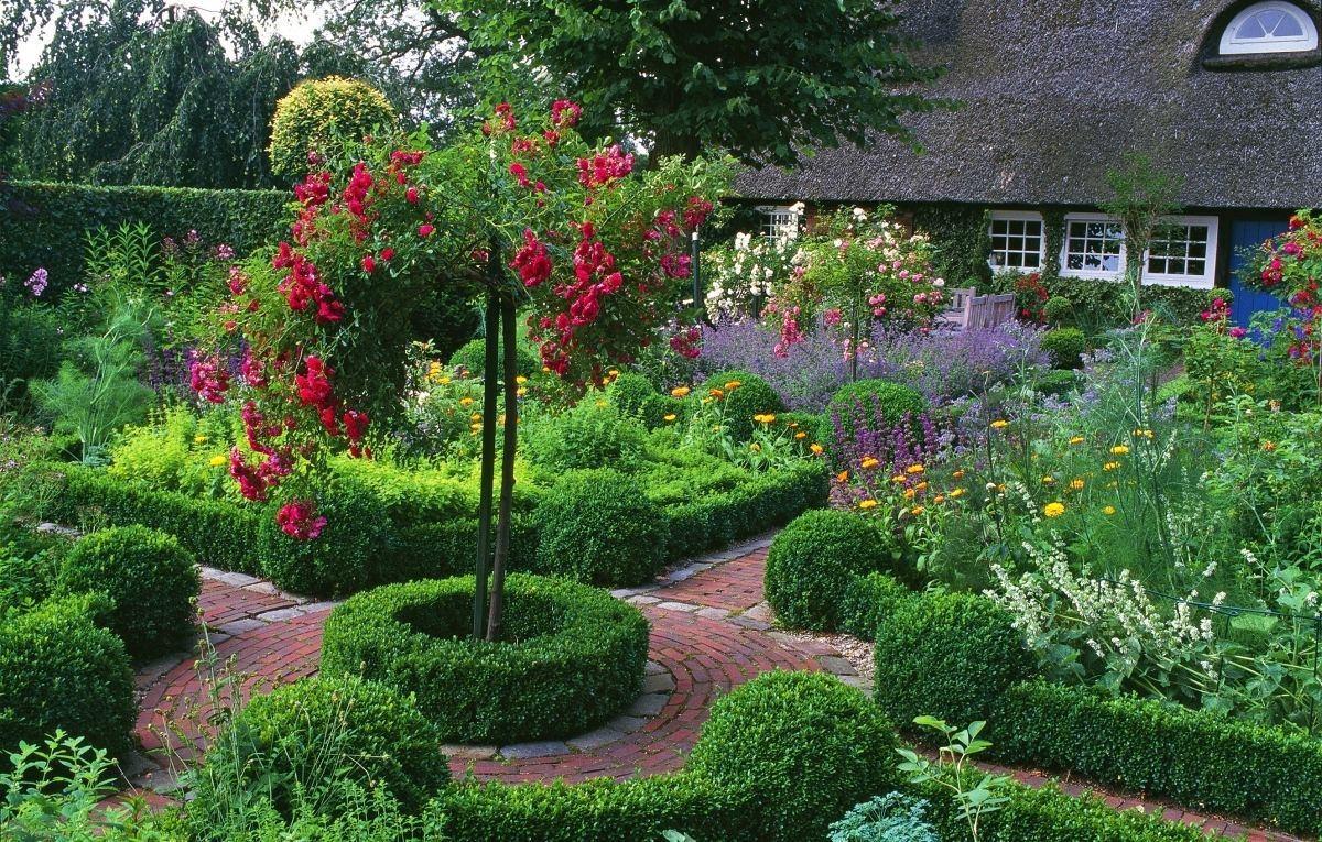 Какие цветы посадить на даче: советы