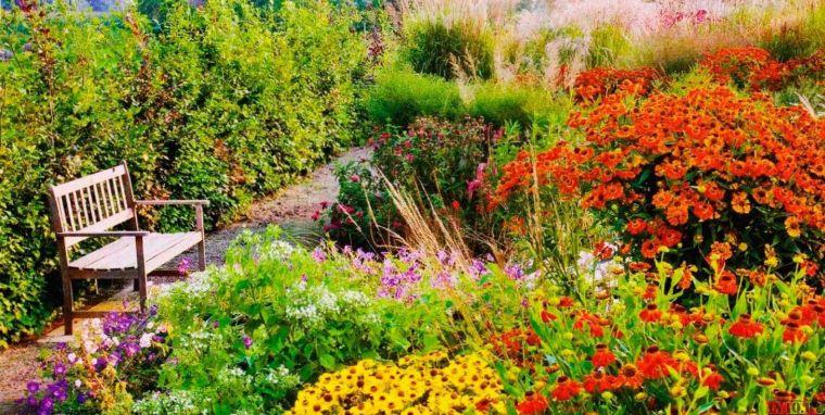 Сад и участок в  цветах:   Бежевый, Бордовый, Салатовый, Темно-зеленый.  Сад и участок в  .