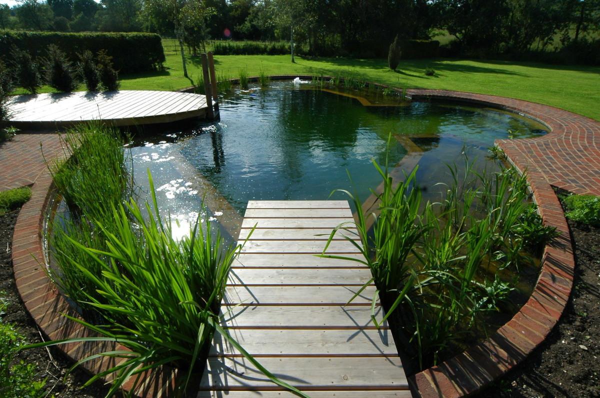 Бассейн, баня, сауна в цветах: черный, серый, светло-серый, темно-зеленый. Бассейн, баня, сауна в стиле экологический стиль.