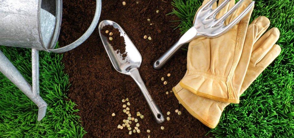 Как сделать свой сад ещё лучше: 8 практичных советов