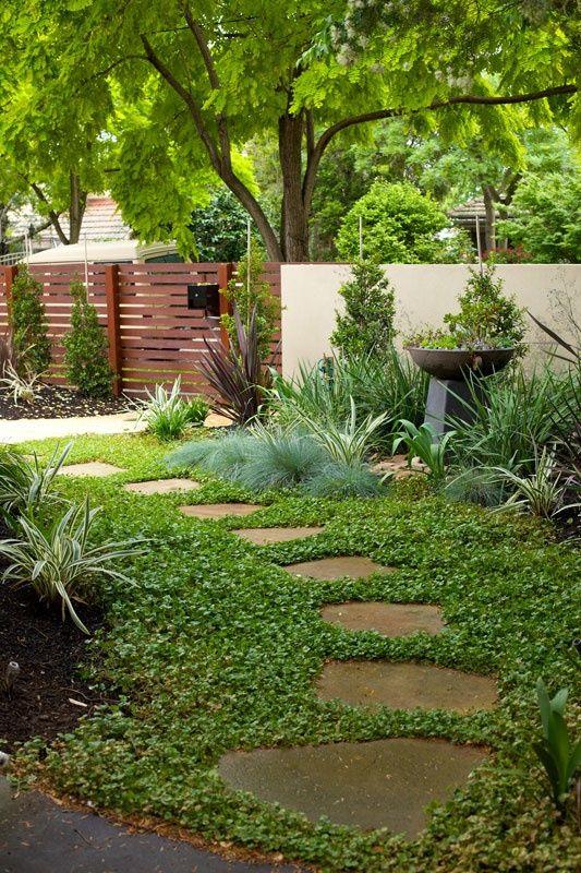 Сад и участок в  цветах:   Бежевый, Зеленый, Салатовый, Темно-зеленый.  Сад и участок в  .