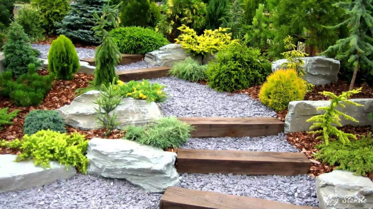 Что посадить на 6 сотках: деревья, растения, кустарники и цветы
