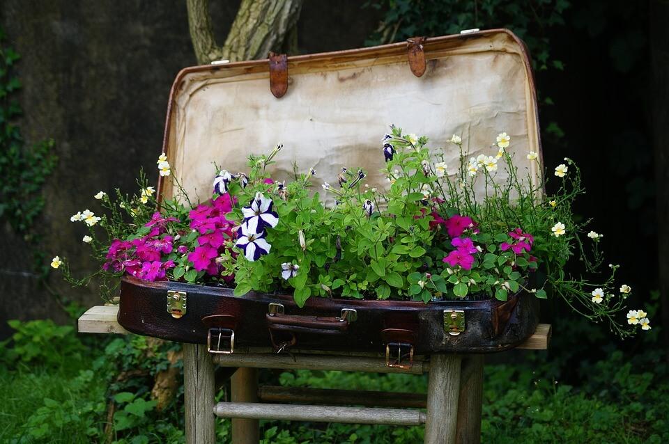 Простые и красивые способы украсить сад — 15 интересных идей