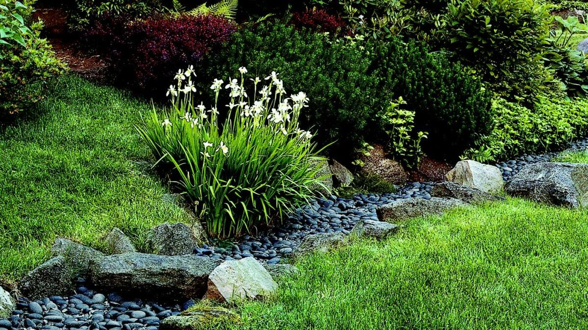 Сухой ручей: создаём имитацию водного потока на участке
